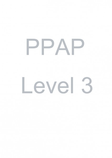 PPAP Level 3